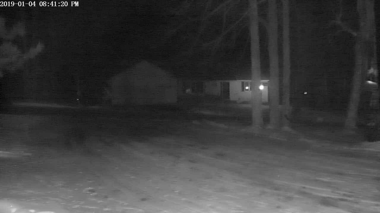 Trump Lake Webcam #3